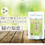 大人ニキビ対策サプリメント【緑の知恵】